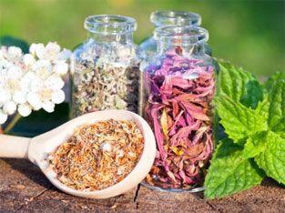 Diuretic herbs